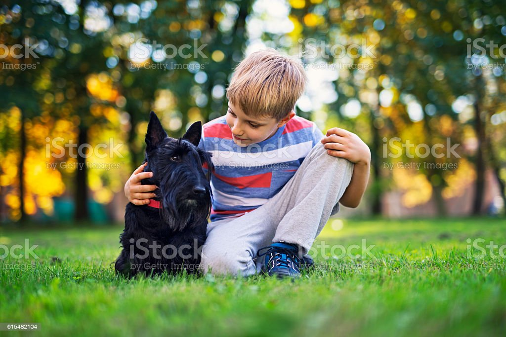 Little boy with his pet pal in autumn park stock photo