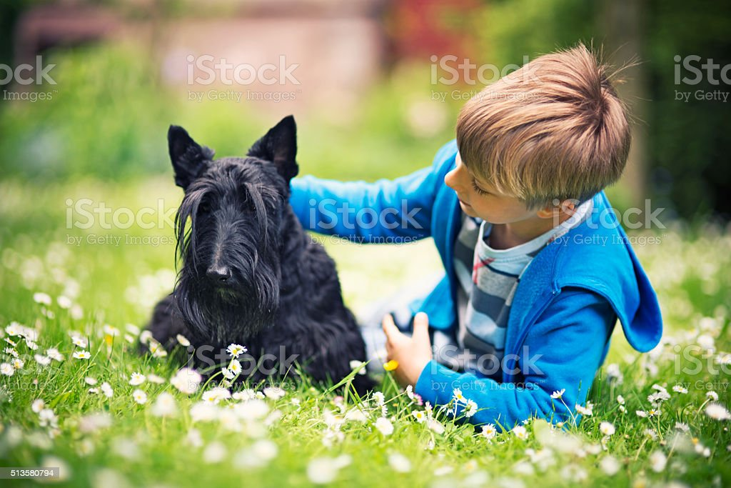 Little boy with his pet pal lying on spring grass stock photo