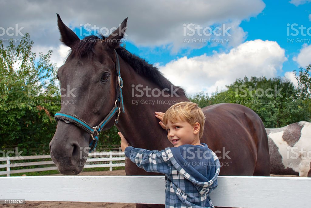 Little boy with horse stock photo