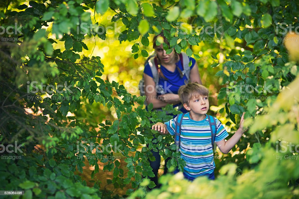 Little boy with mother hiking through a thick forest stock photo