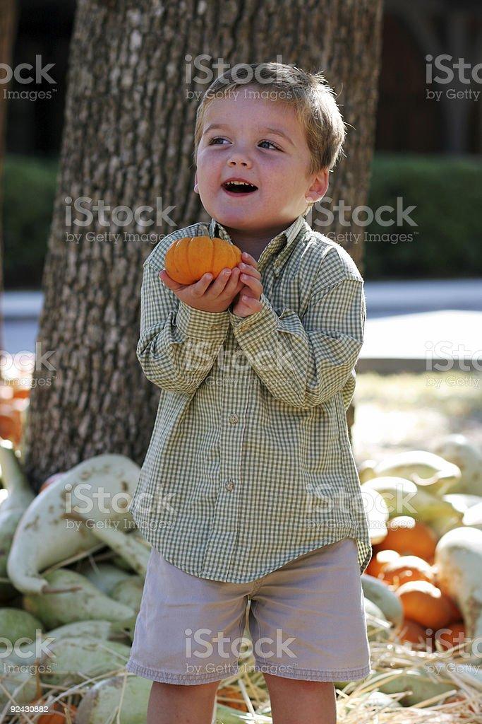Little boy with pumpkin stock photo