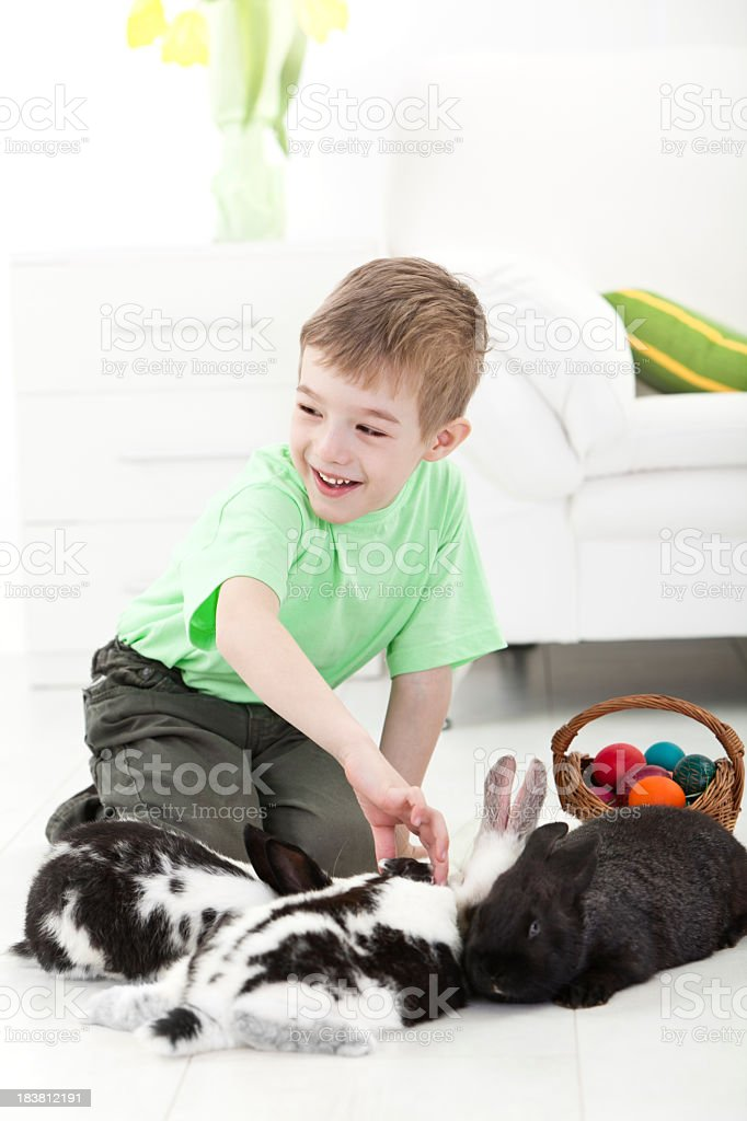 Little boy with rabbits and Easter eggs in a basket royalty-free stock photo