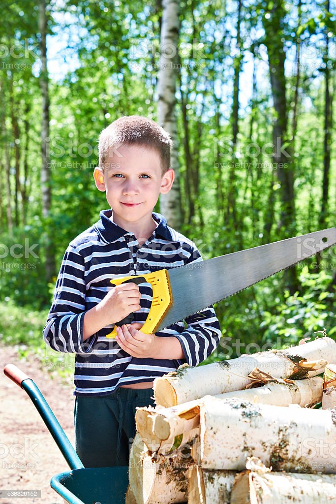 Little boy with wheelbarrow sawing wood in forest stock photo