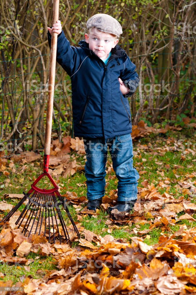 Little boy works in the garden royalty-free stock photo