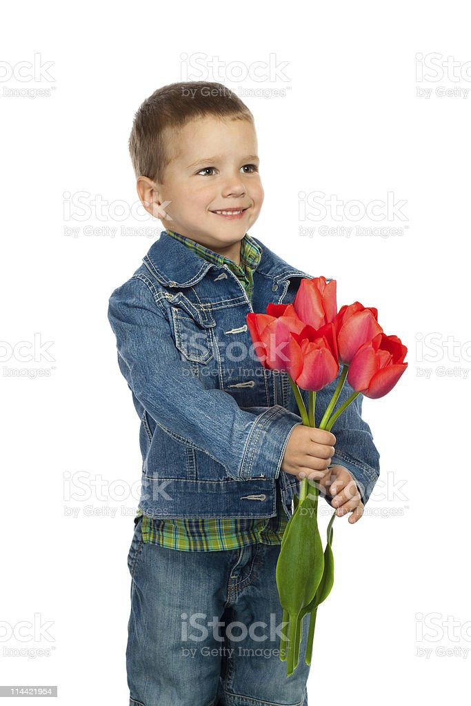 Little boyl with red tulips royalty-free stock photo