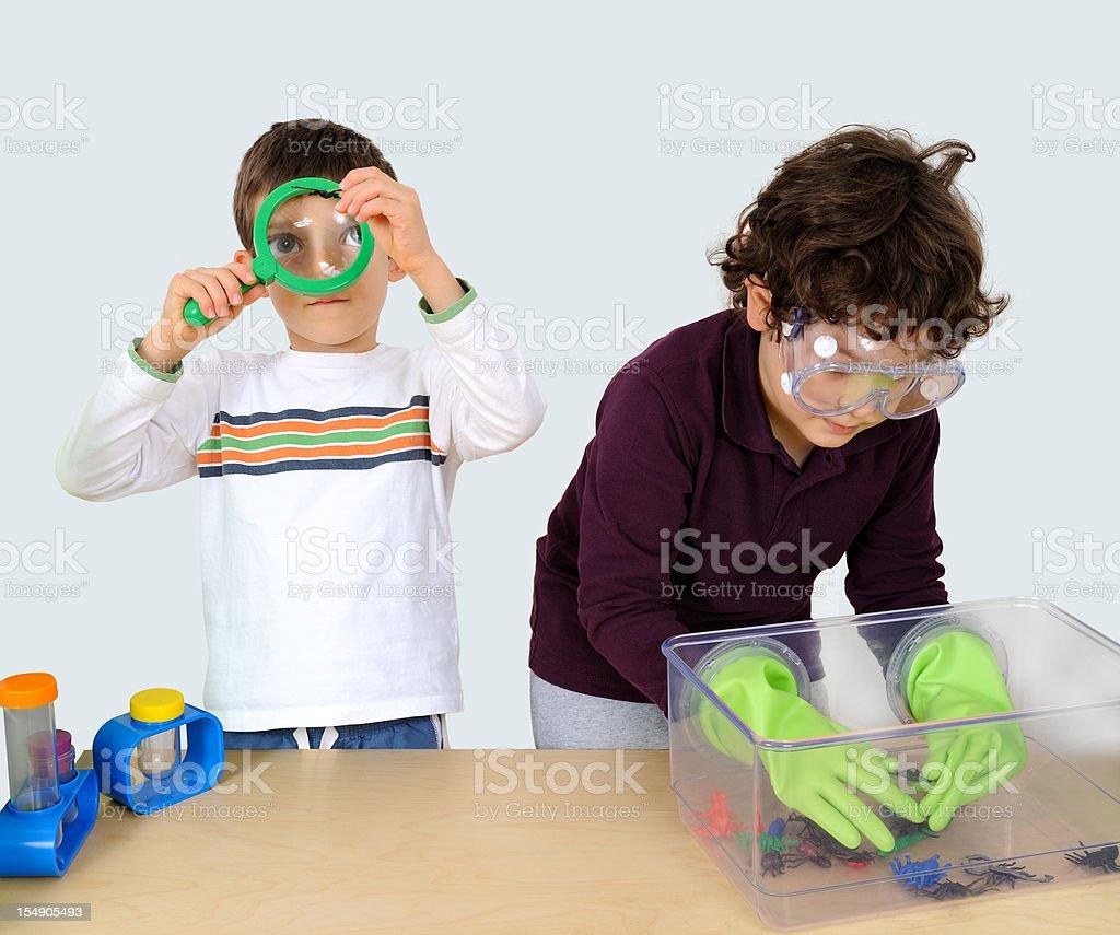 Little boys entomologist stock photo