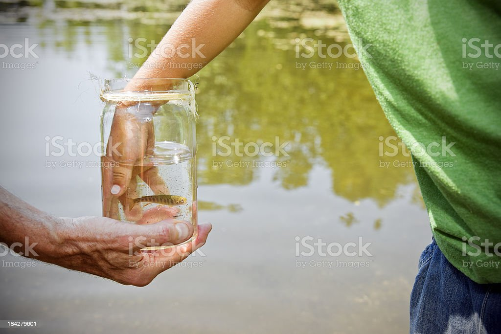 Little boy's hand and a fish. royalty-free stock photo