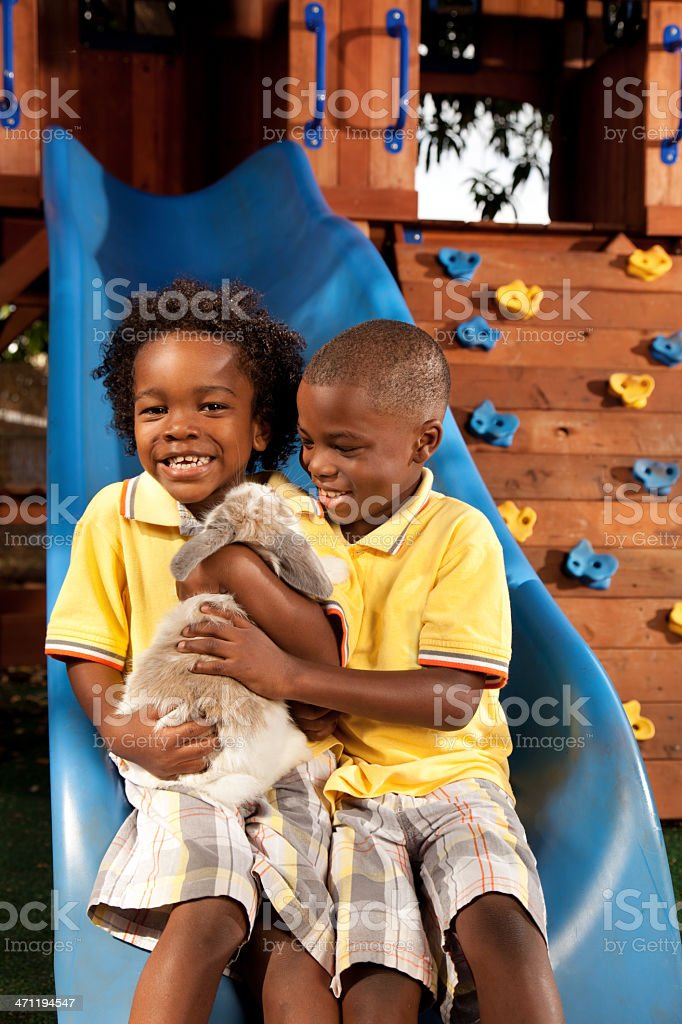 Little Boys holding their pet rabbit royalty-free stock photo