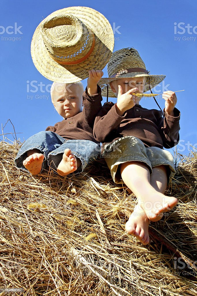 Little Boys in Straw Hats Sitting on Hay Bales royalty-free stock photo