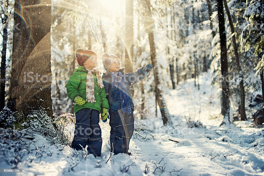 Little boys in winter forest stock photo