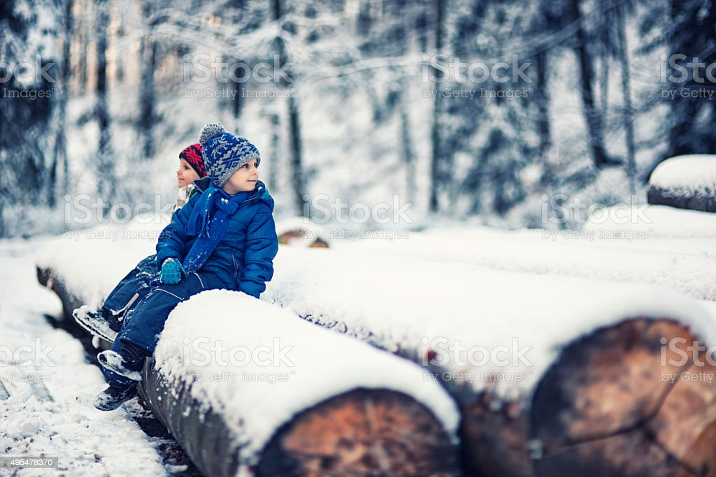 Little boys sitting on tree trunks in winter forest. stock photo