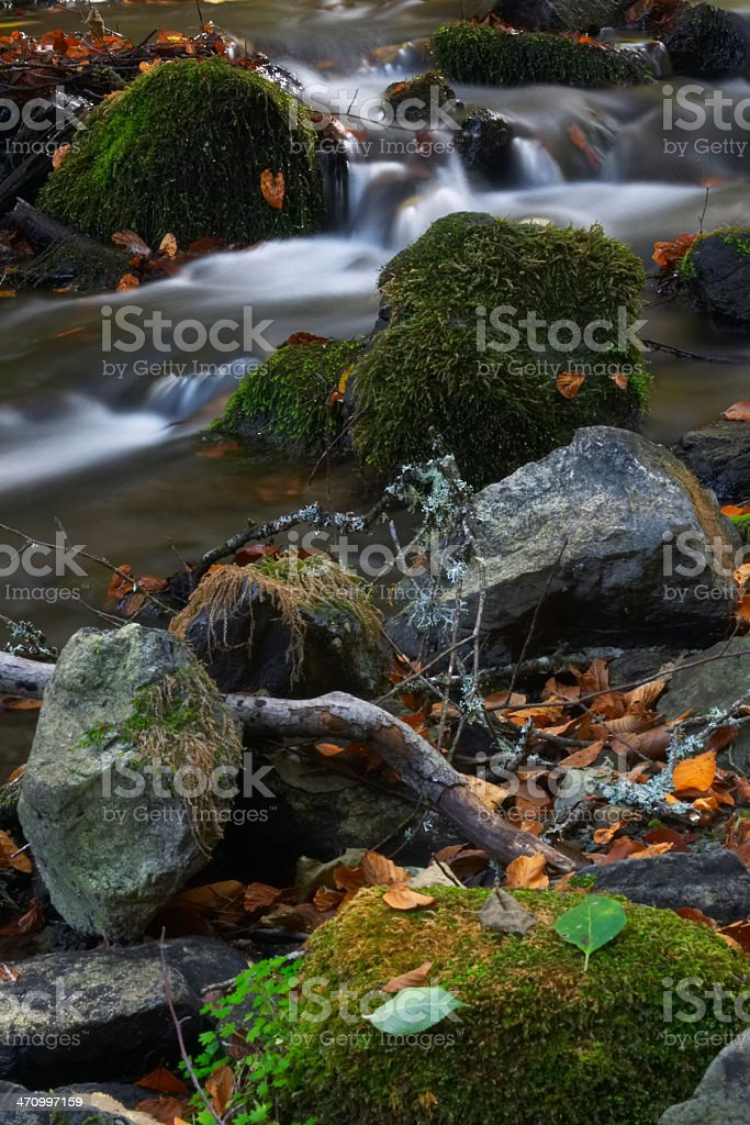 Little Brook II stock photo