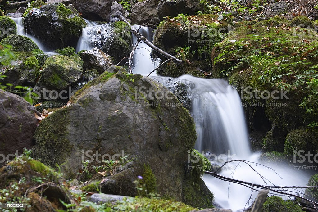 Little Brook stock photo