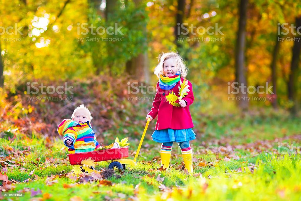 Little brother and sister in an autumn park stock photo