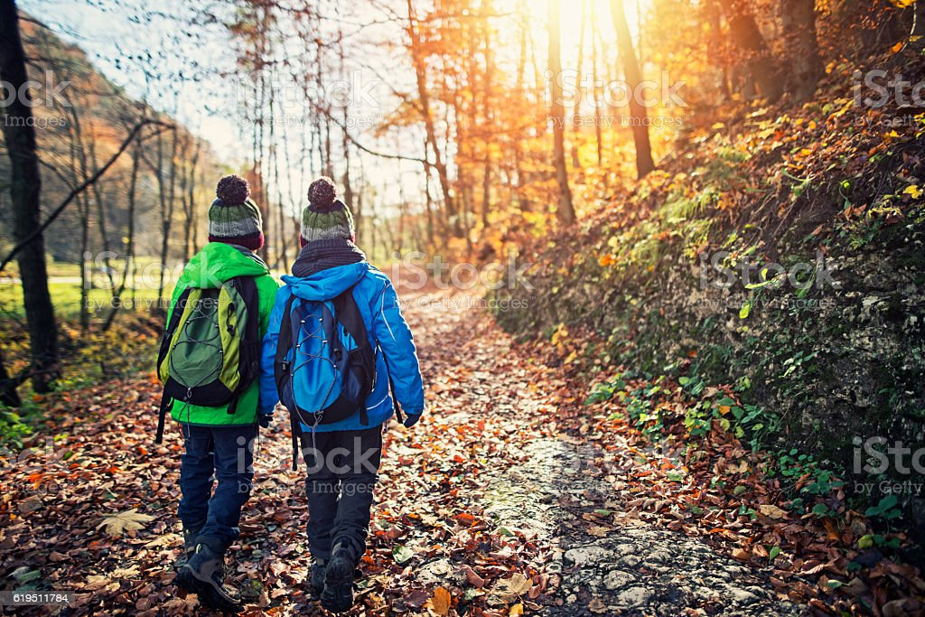 Little brothers hiking in autumn stock photo