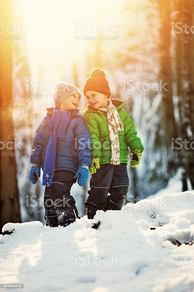 Little brothers playing in winter forest stock photo