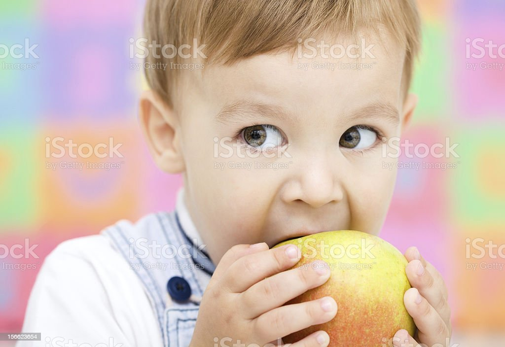 Little child is biting red apple royalty-free stock photo