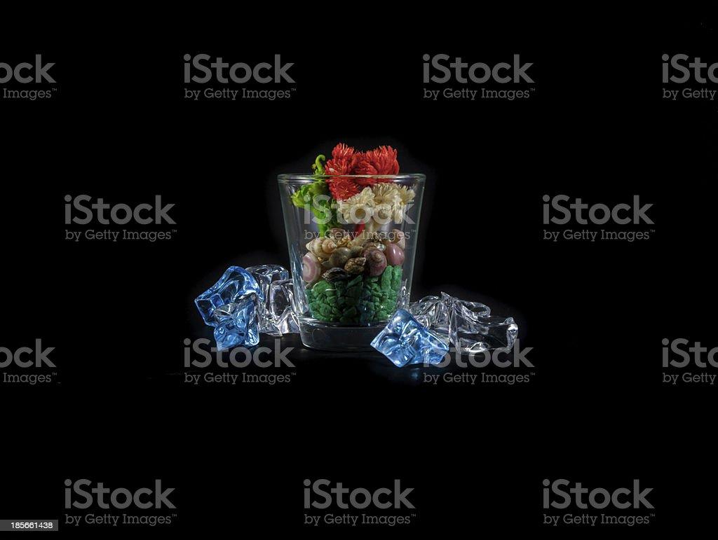 little colour plant royalty-free stock photo