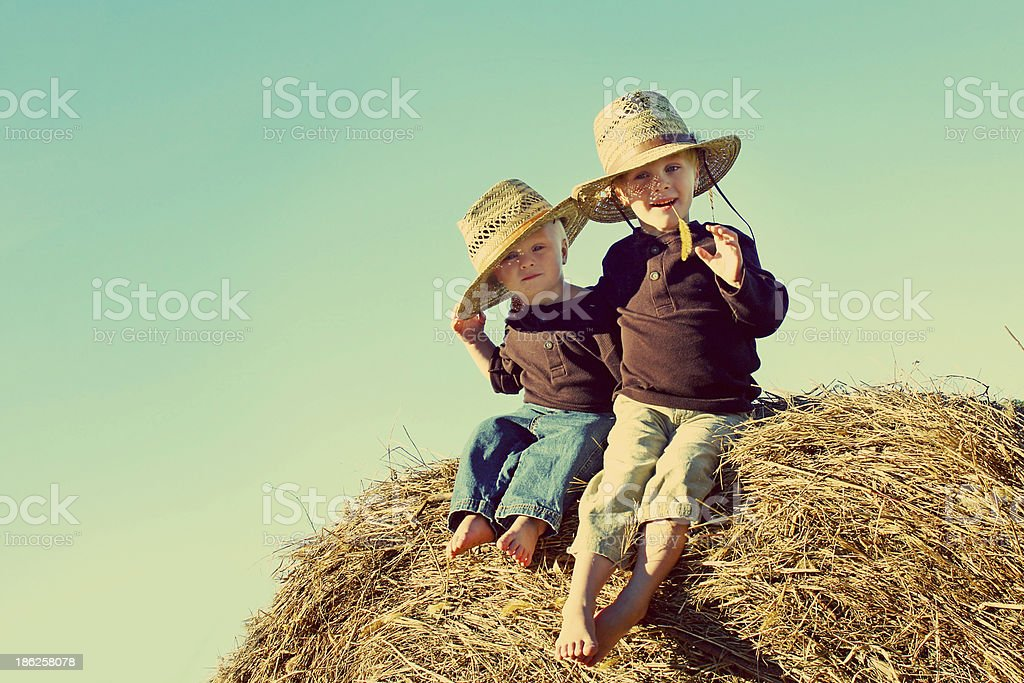 Little Country Boys on Farm stock photo