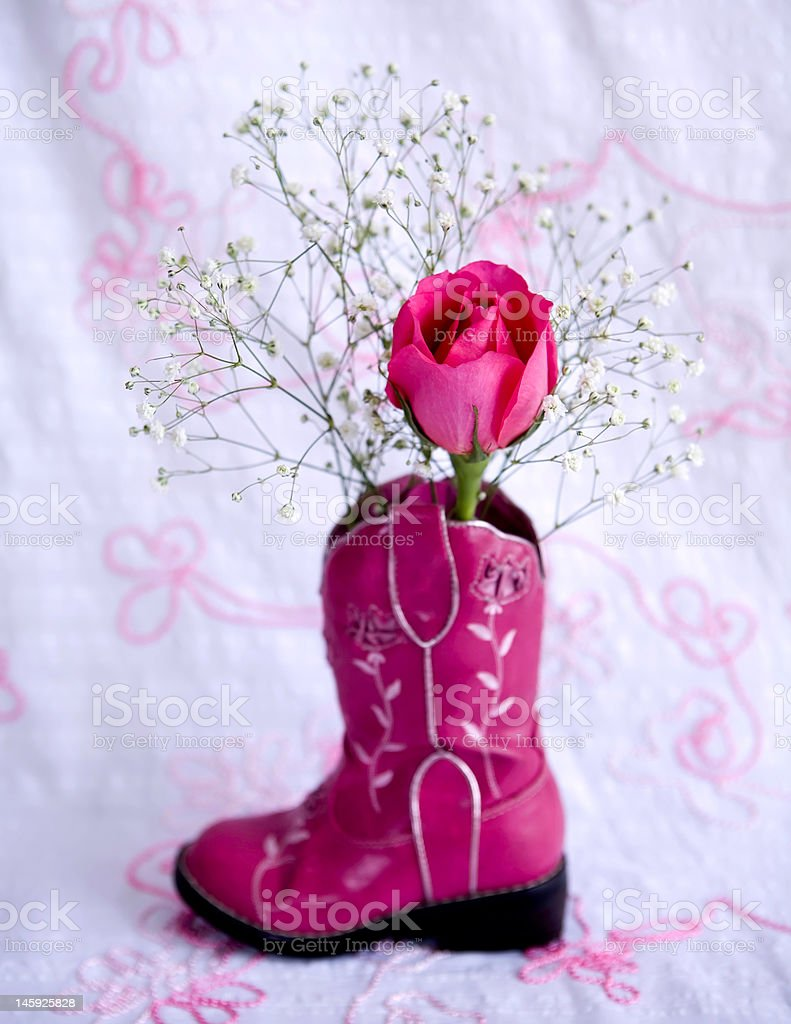 Little Cowgirl Rose royalty-free stock photo