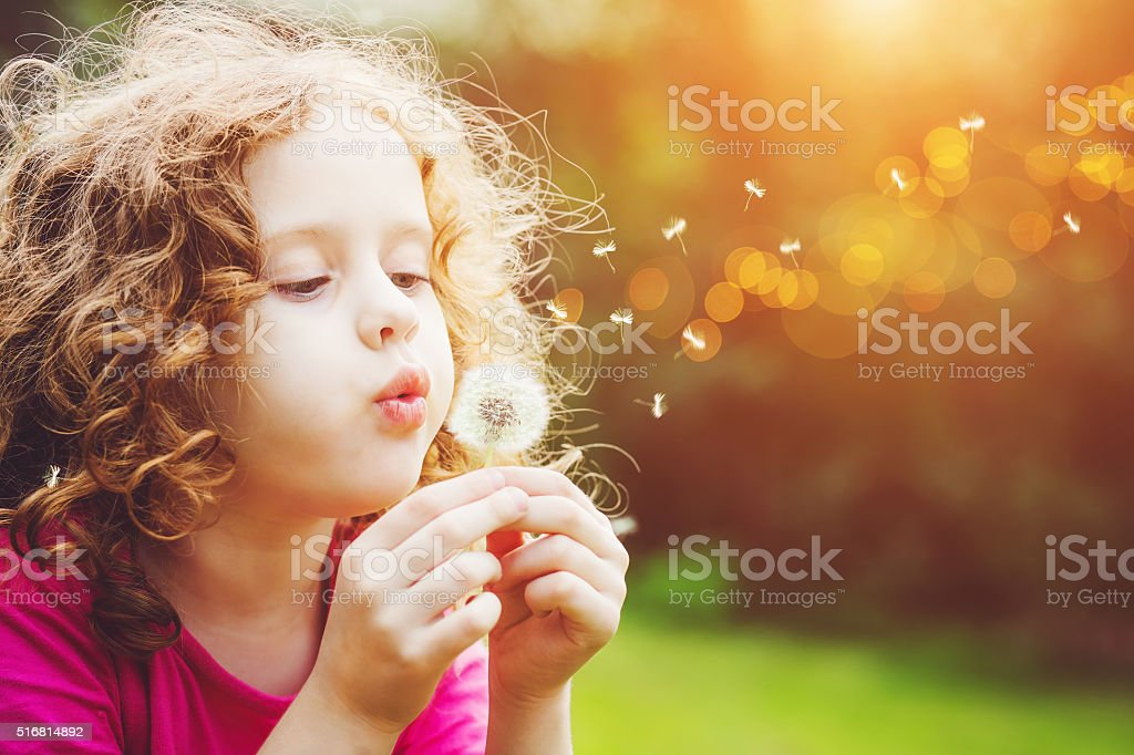Little curly girl blowing dandelion. stock photo
