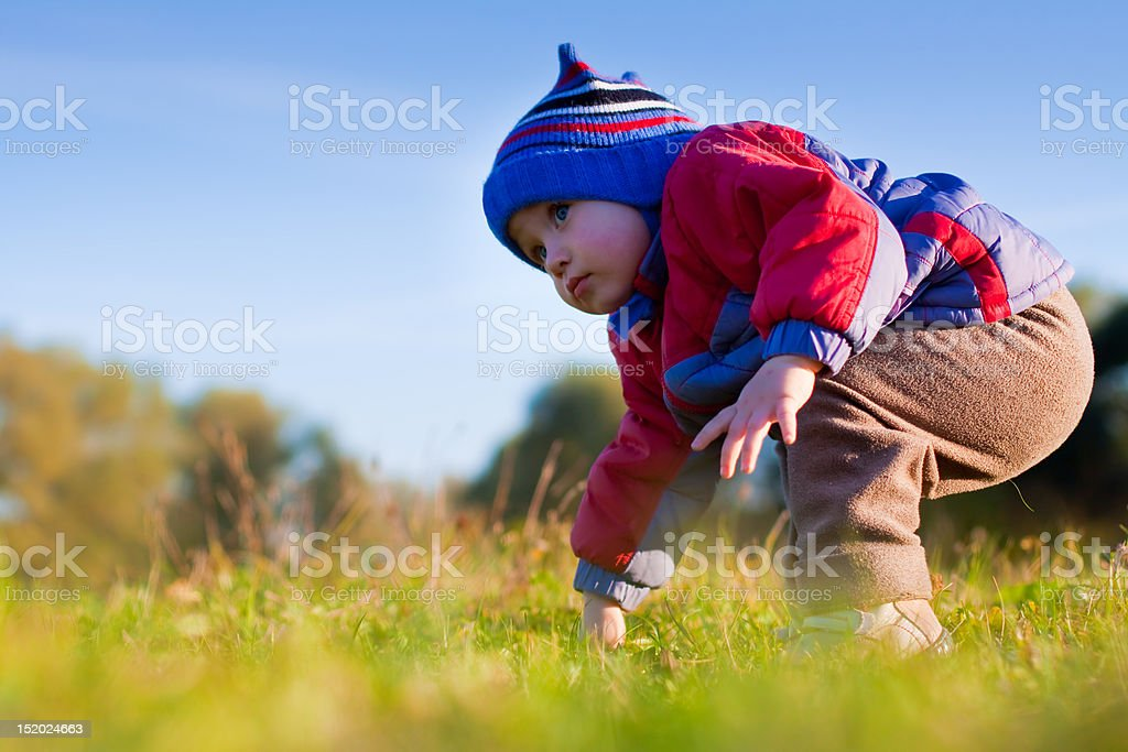 Little cute boy making his first steps on the grass royalty-free stock photo