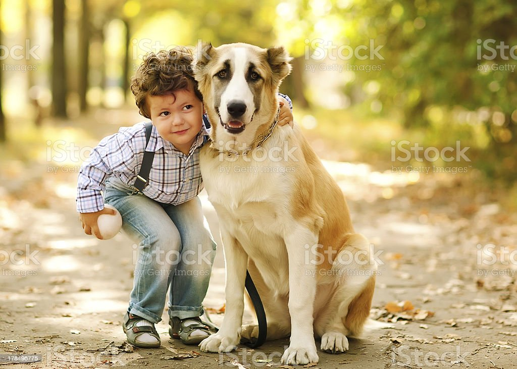 little cute boy playing with his dog royalty-free stock photo