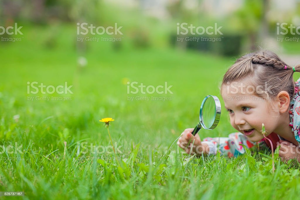 little cute girl with magnifying glass examining flower stock photo