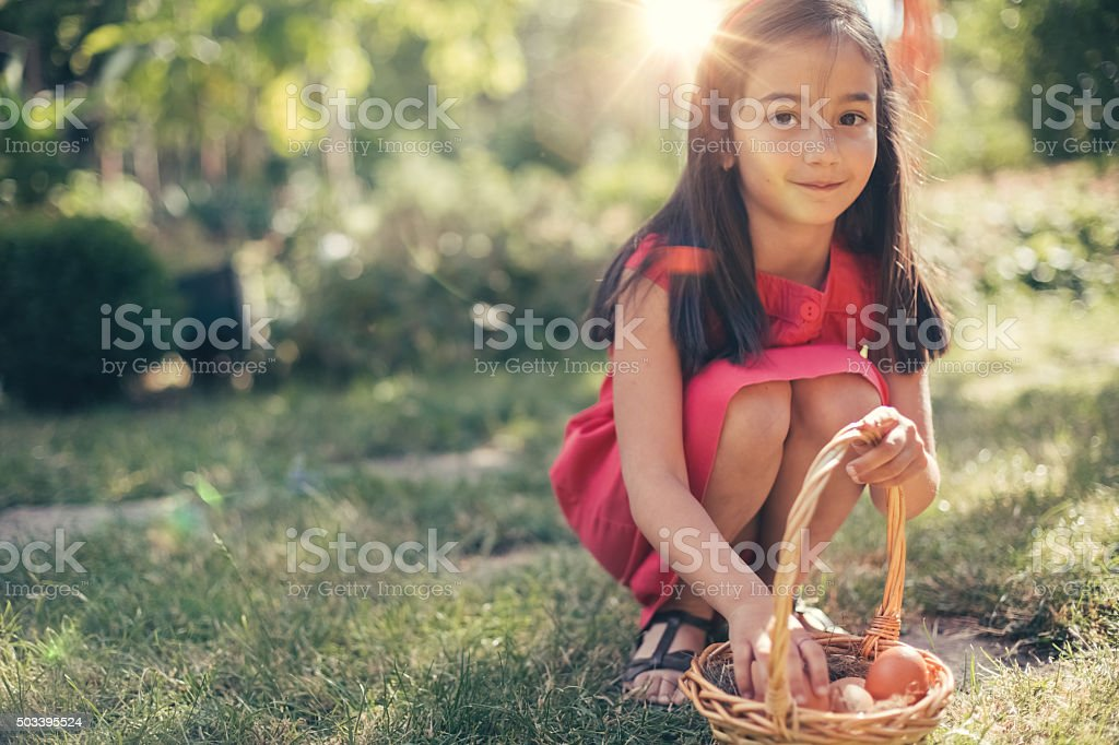 Little cutie gathering eggs stock photo