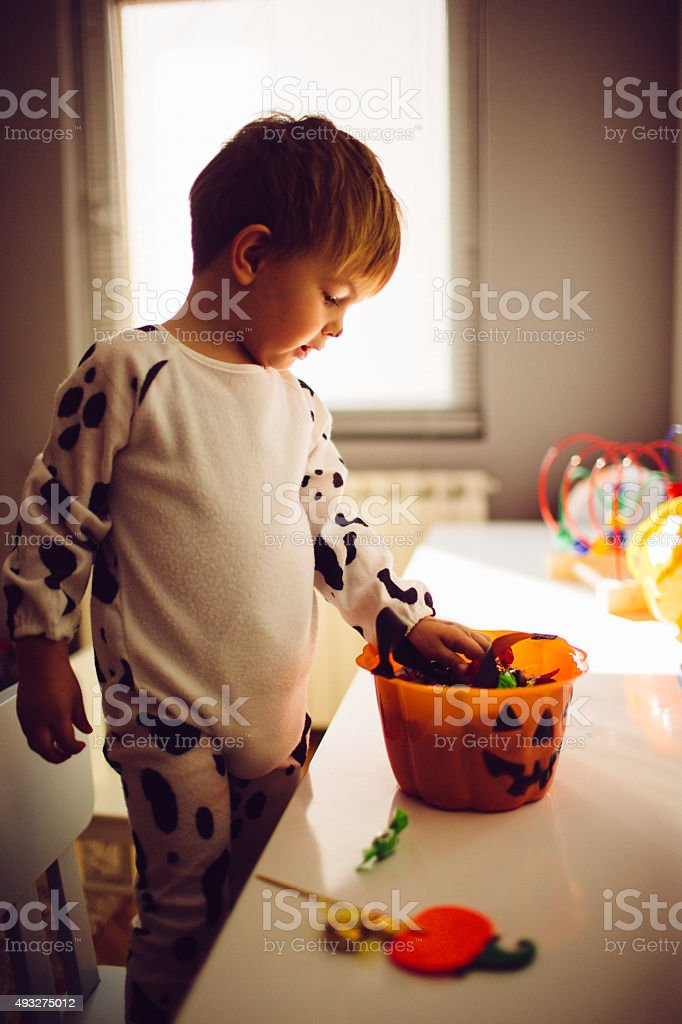Little dalmatian dog and his treats stock photo
