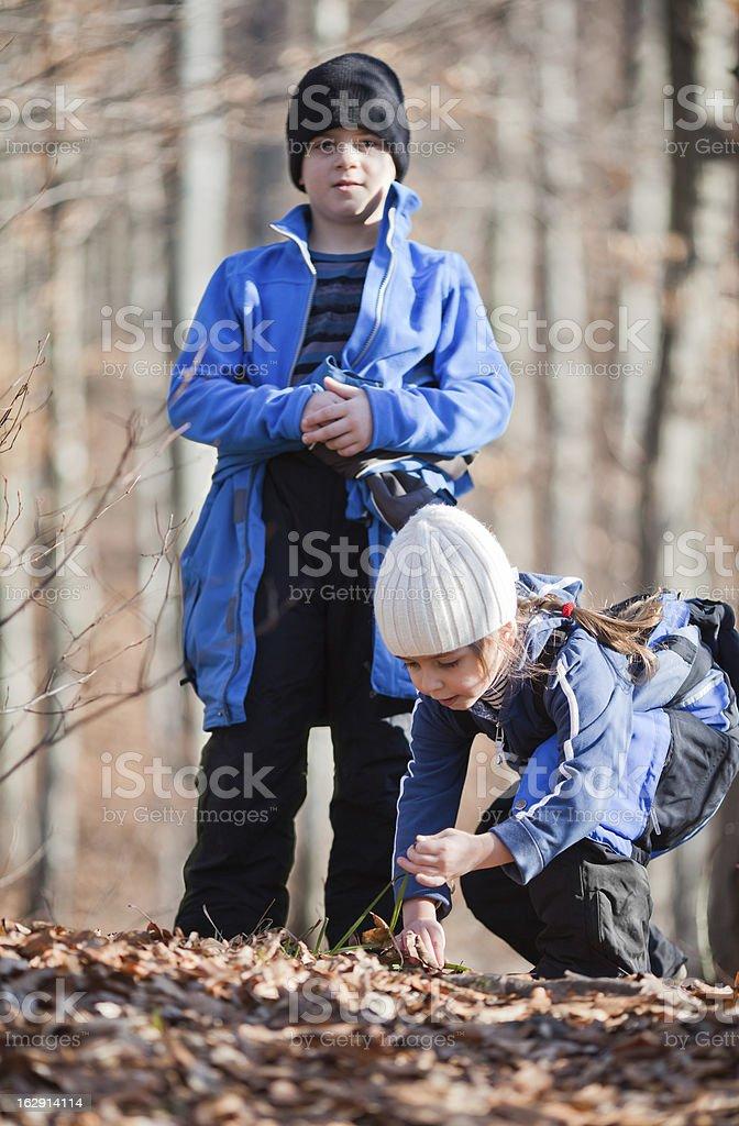 Little explorers royalty-free stock photo