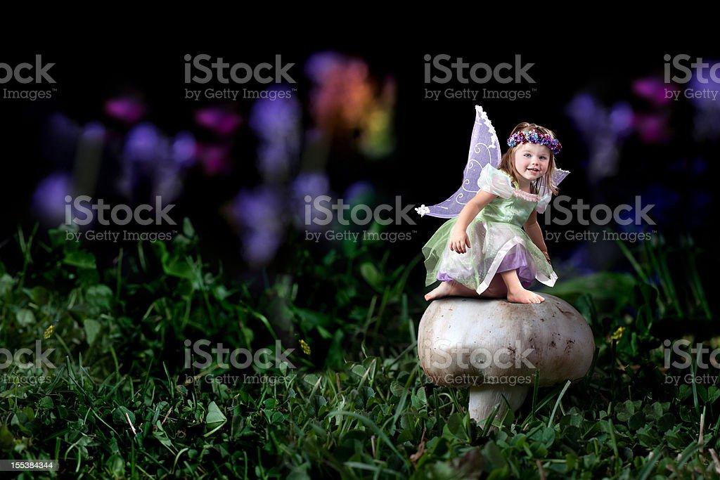 Little Fairy on Mushroom stock photo