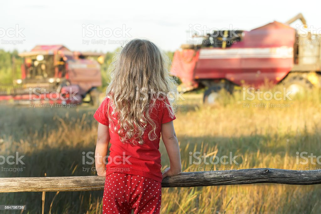 Little farm girl looking at field with working combine harvesters stock photo