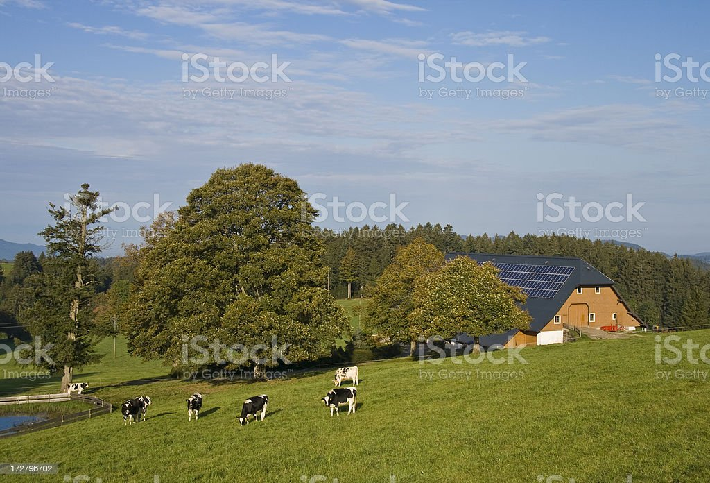 little farm in black forest royalty-free stock photo