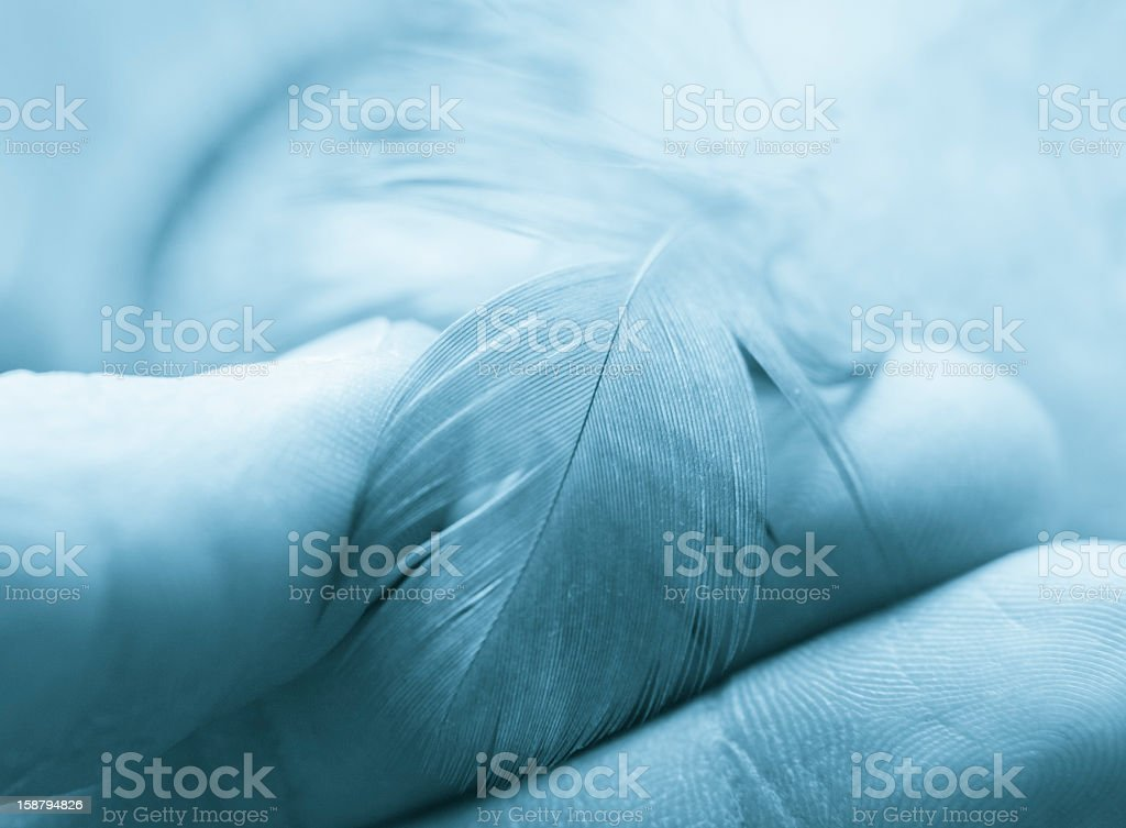 Little Feather In The Hand, Blue Toned royalty-free stock photo