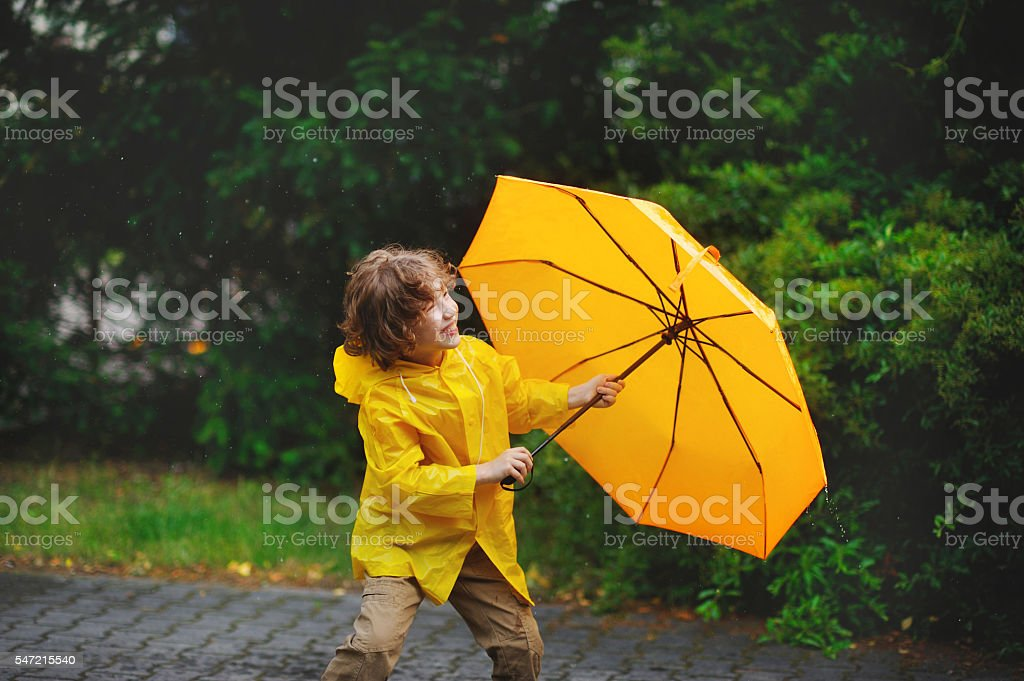Little fellow walking in the rain. stock photo