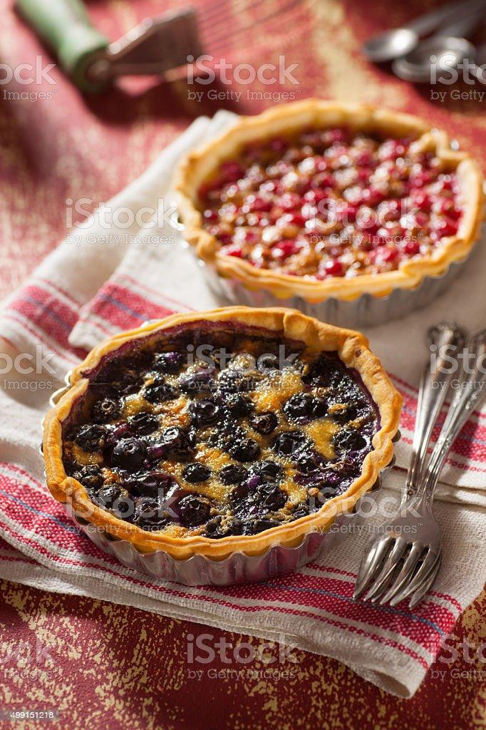 Little Fruit Custard Pies stock photo