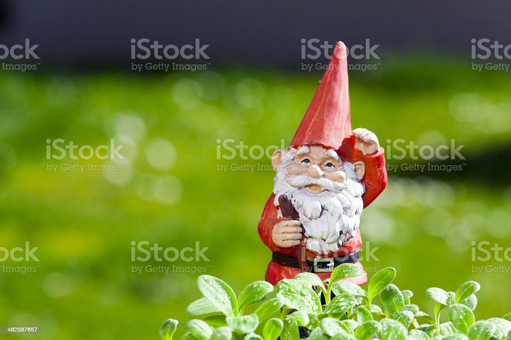 Little funny garden gnome is standing outside stock photo