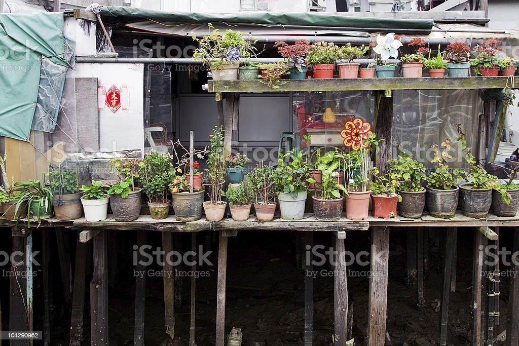 Jardín de niños en la parte posterior de la casa foto de stock libre de derechos