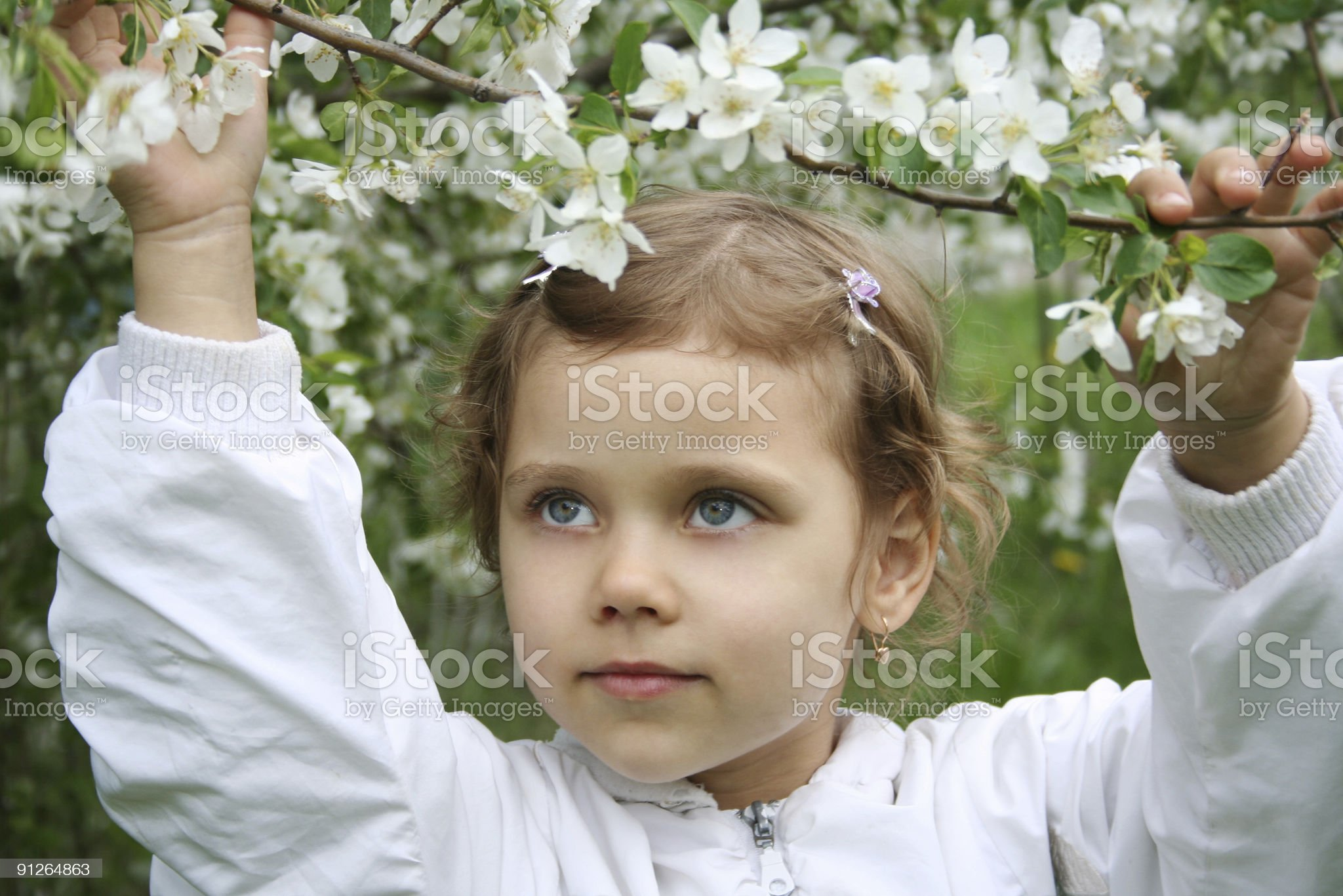 Little girl and a blossoming apple tree royalty-free stock photo