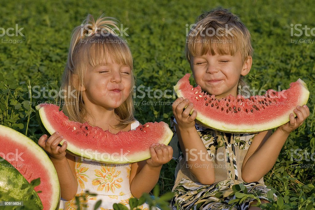 A little girl and boy in a field eating slices of watermelon royalty-free stock photo