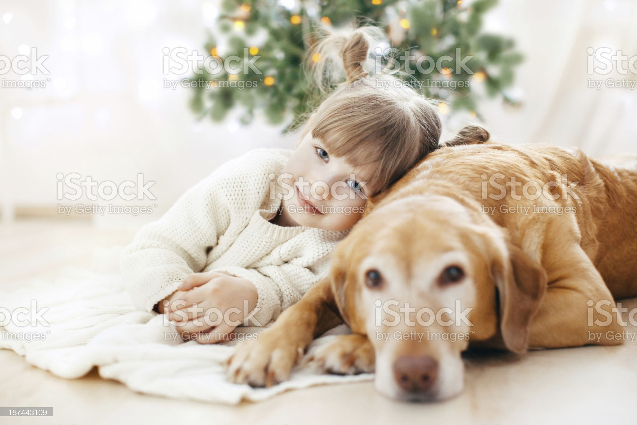 Little girl and dog royalty-free stock photo