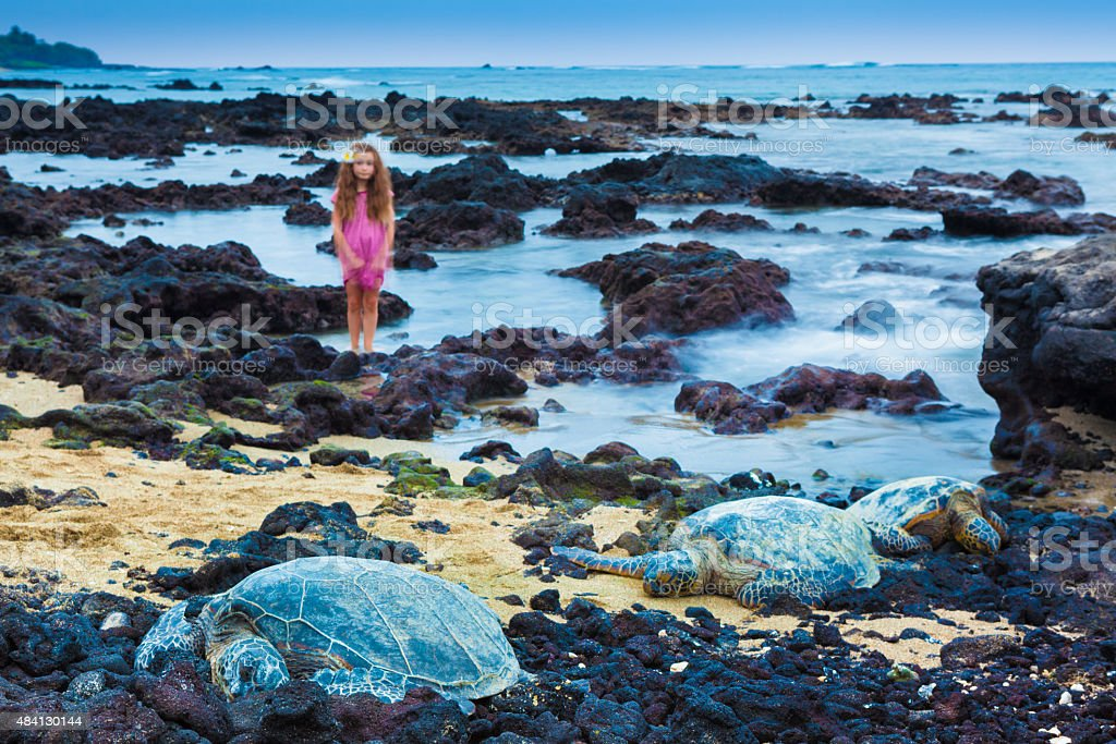 Little girl and green sea turtles stock photo