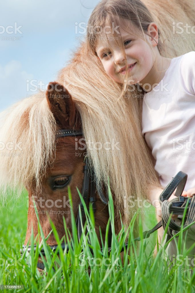 little girl and pony stock photo