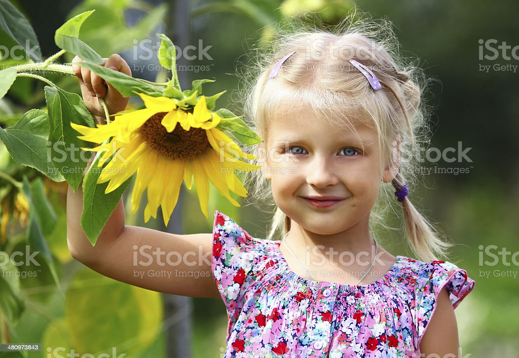 little girl and sunflower stock photo