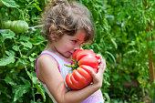 Little girl, big tomato
