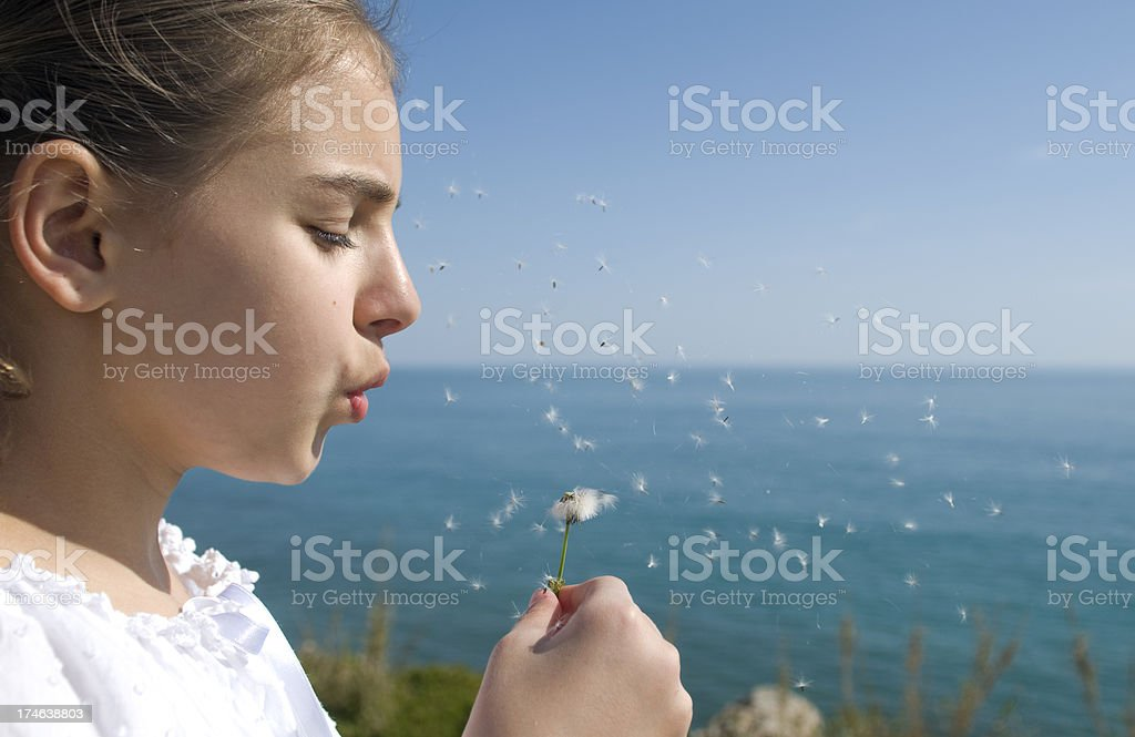 Little girl blowing dandelion royalty-free stock photo