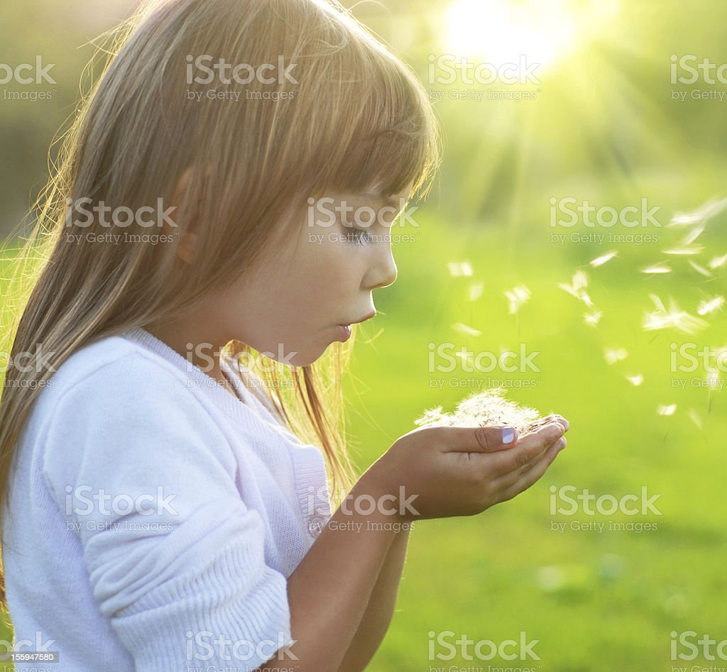 Little girl blowing dandelion seeds from her hands royalty-free stock photo