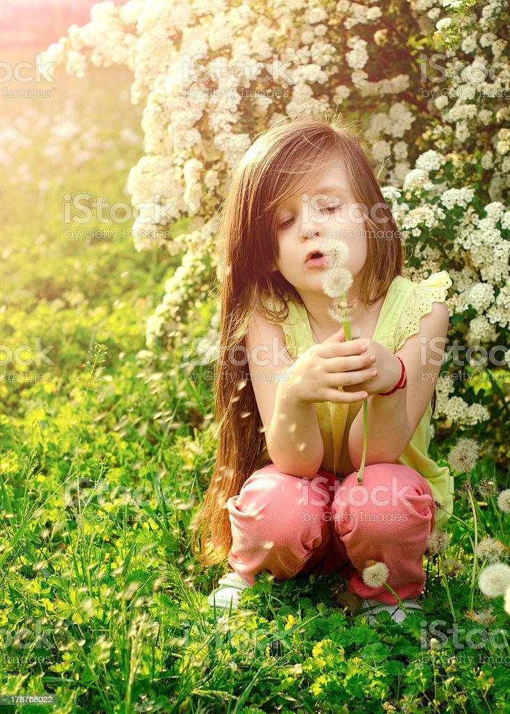 Petite fille de soufflage des graines de pissenlit dans le jardin photo libre de droits