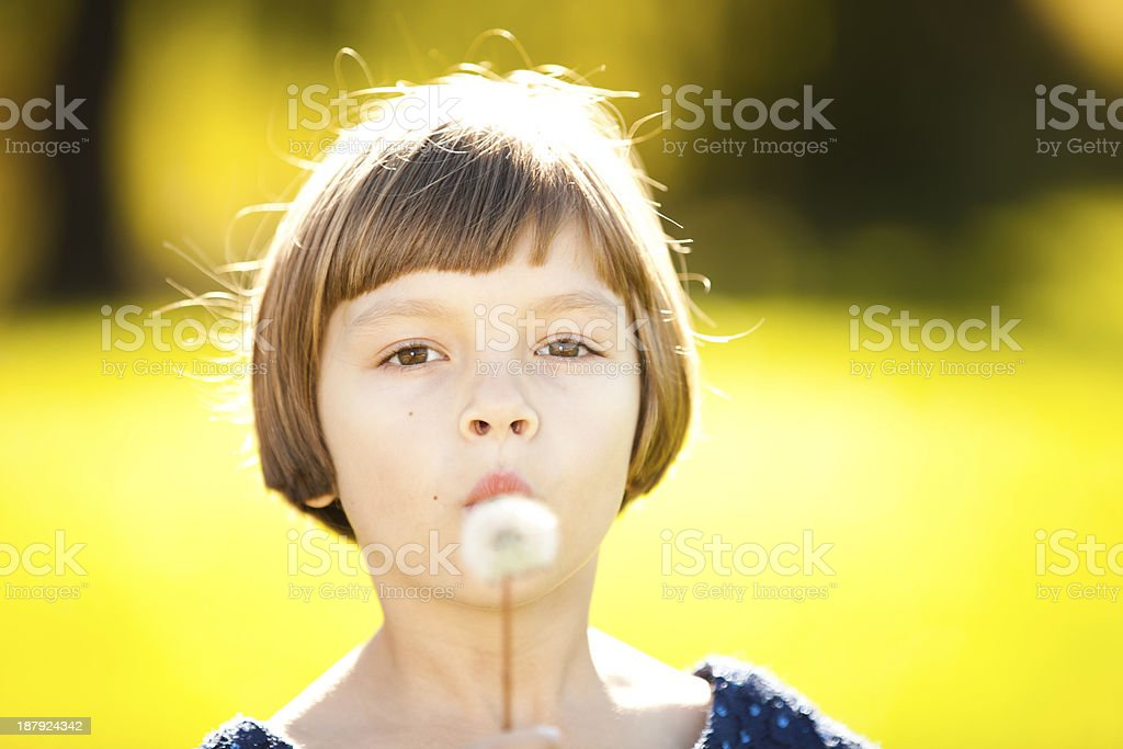 Little girl blowing on a white dandelion. royalty-free stock photo